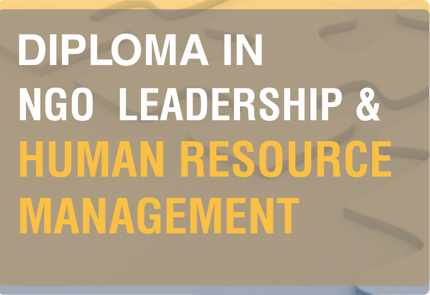 Diploma in NGO Leadership and Human Resource Management